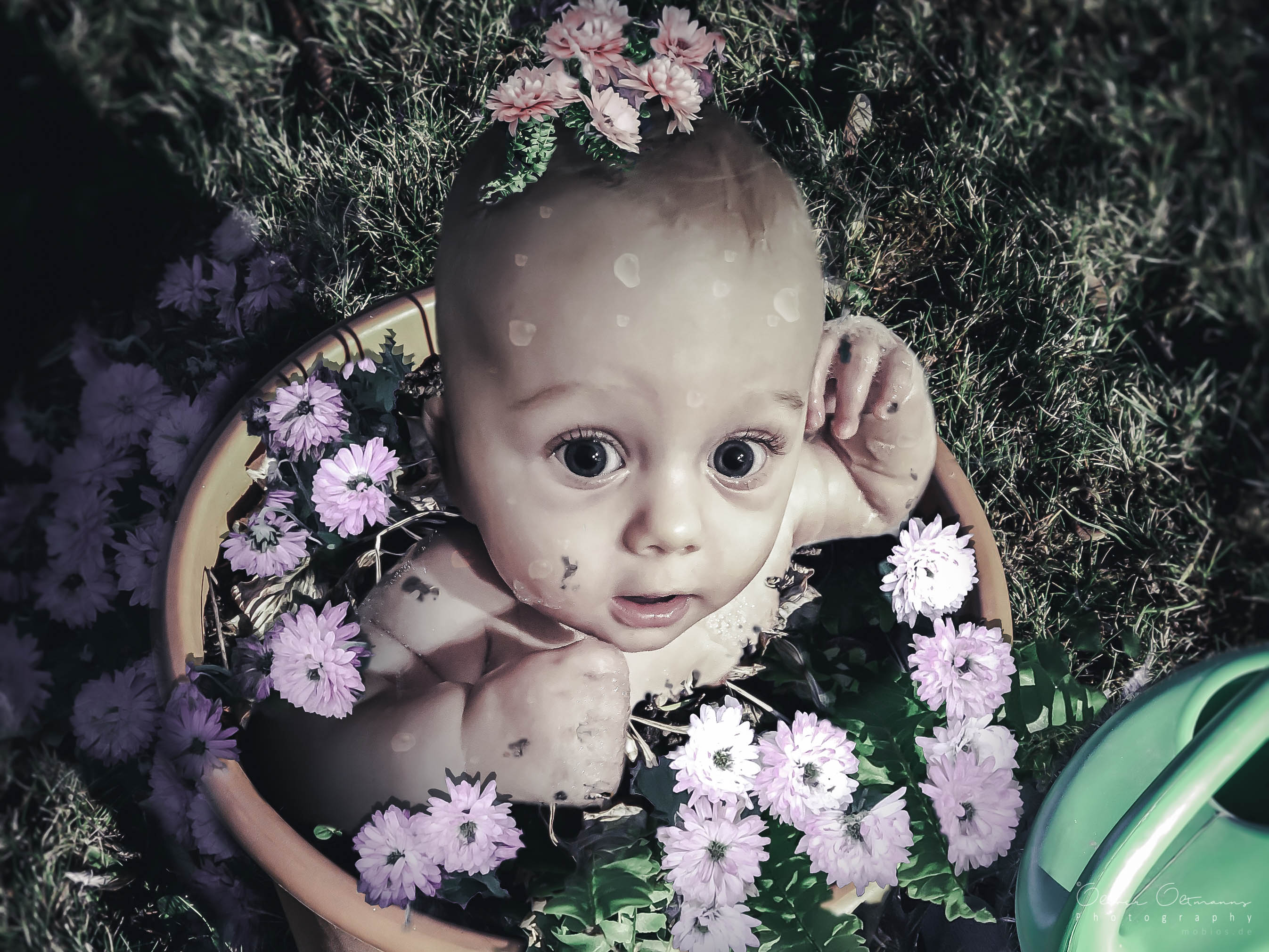 Baby im Blumentopf