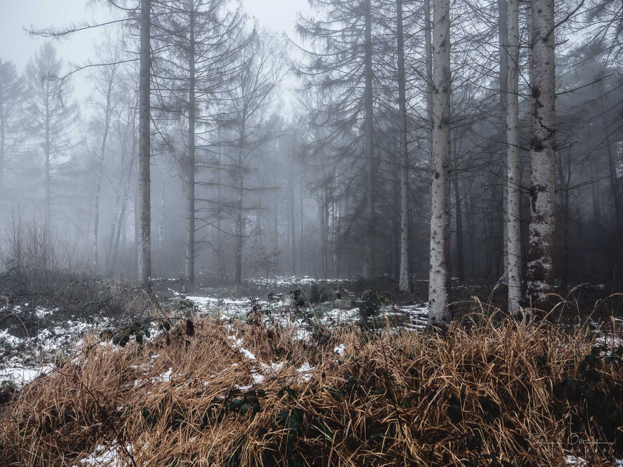Winter clearing