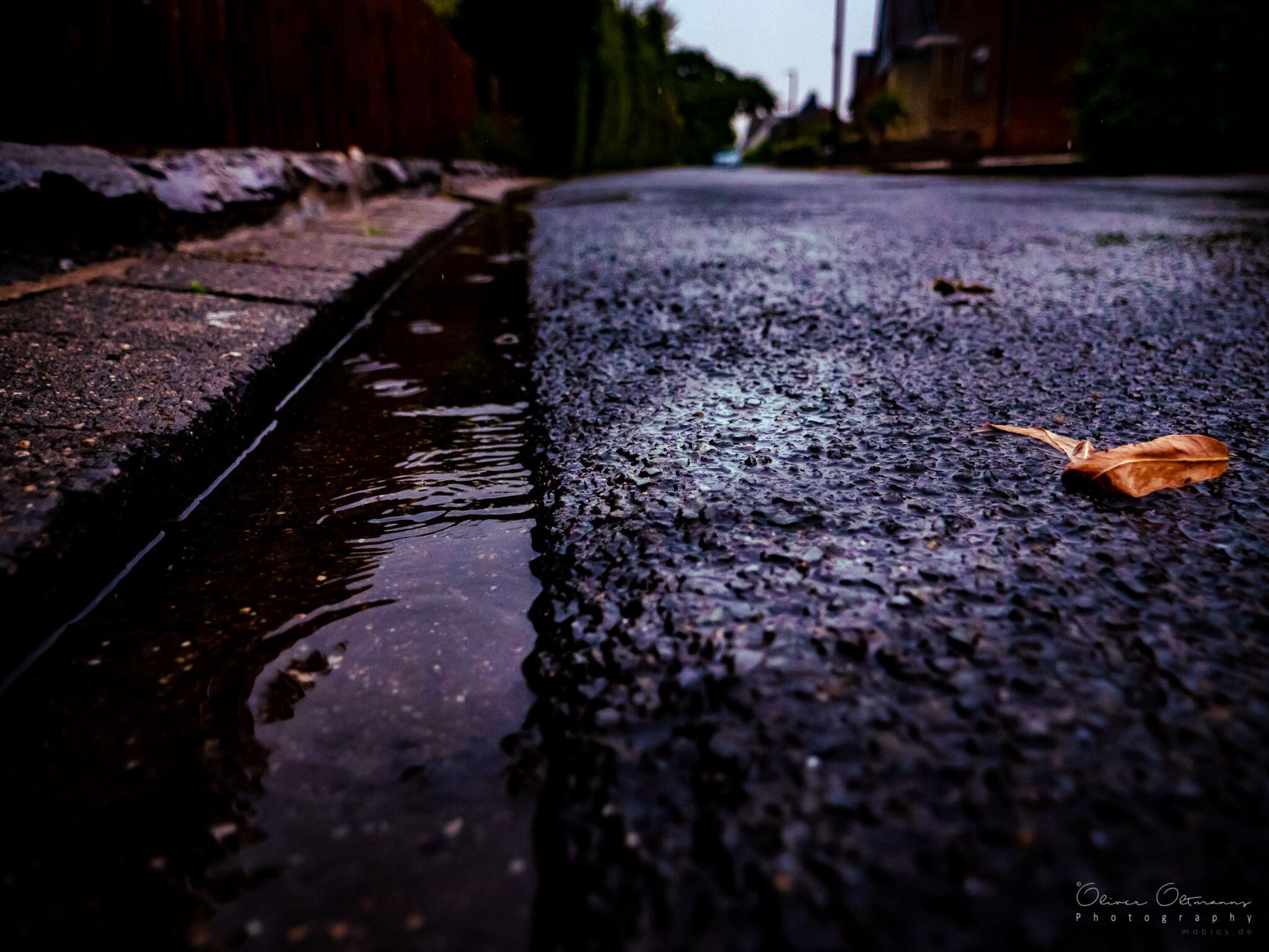 Rain Finaly